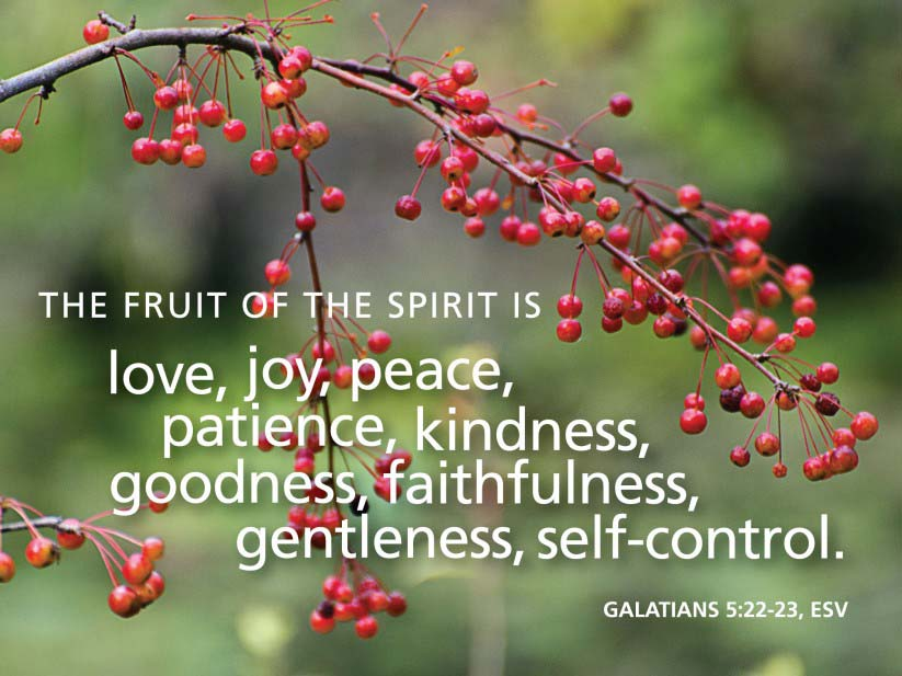 The Spiritual Fruit of Patience